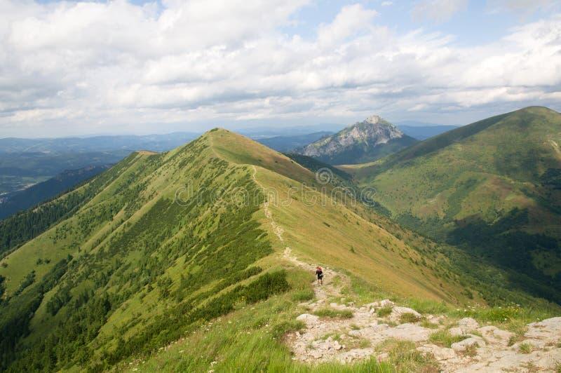 mala Σλοβακία fatra στοκ εικόνες με δικαίωμα ελεύθερης χρήσης