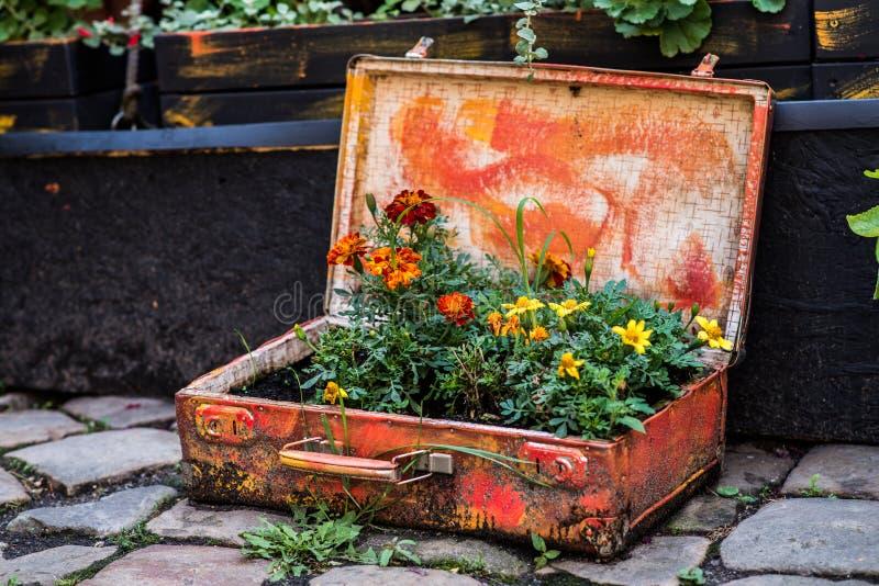 Mala de viagem velha com flores imagens de stock royalty free