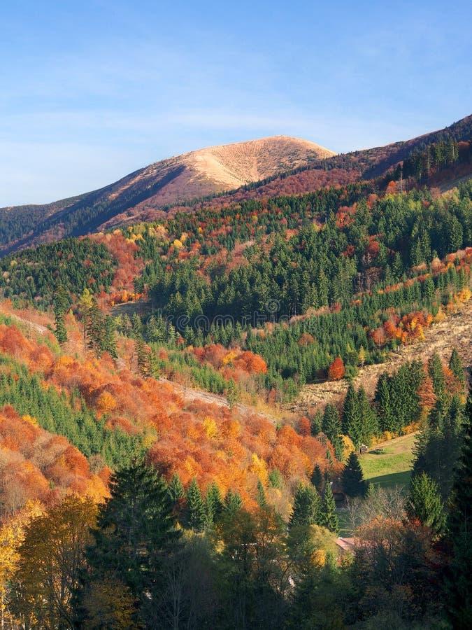 Mala Fatra park narodowy w jesieni obraz royalty free