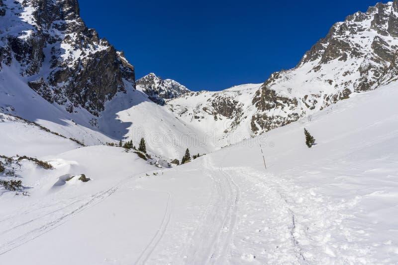 Mala Studena dolina in the winter. Tatra Mountains. Slovakia.  stock photography