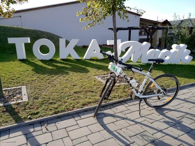 Modern bike in Tokaj valley in Slovakia royalty free stock photos