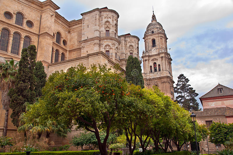Malaga Cathedral. In Andalucia, Spain stock photos