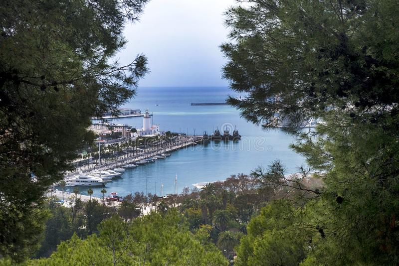 of the Spanish city of Malaga. Port, gulf, ships. A look at the harbor through conifer stock images