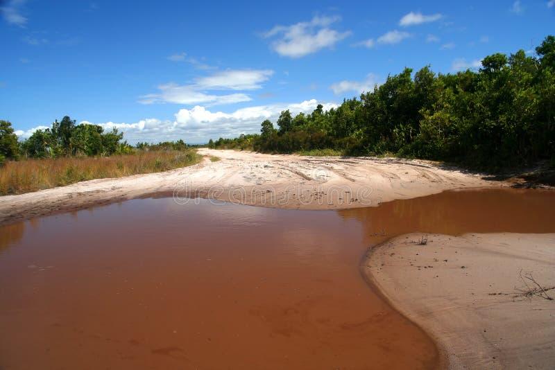 Malagasy coastal road royalty free stock images