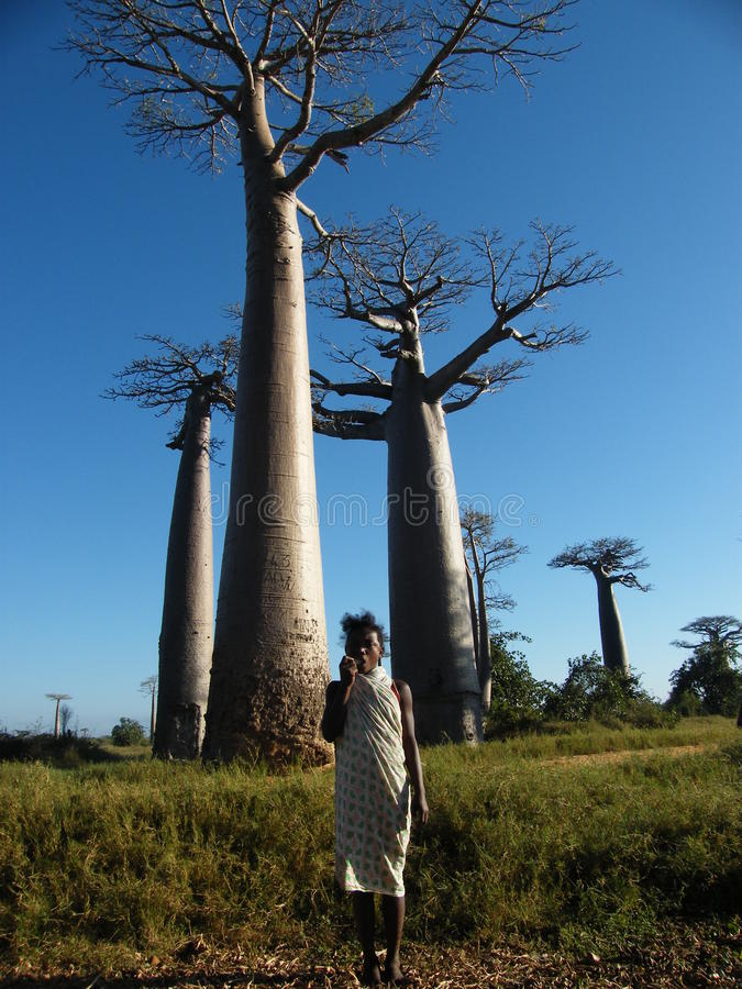 Malagasy native girl royalty free stock photography