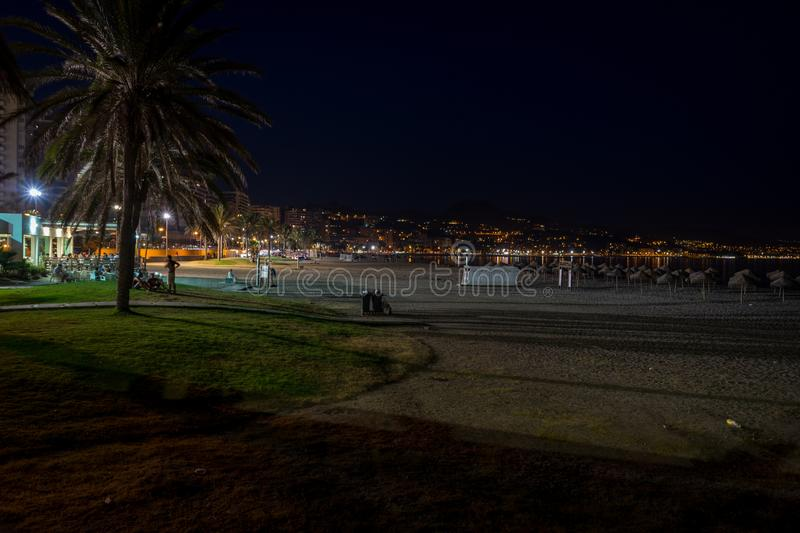 The Malagueta beach at night time in Malaga, Spain, Europe. With palm tree royalty free stock photo