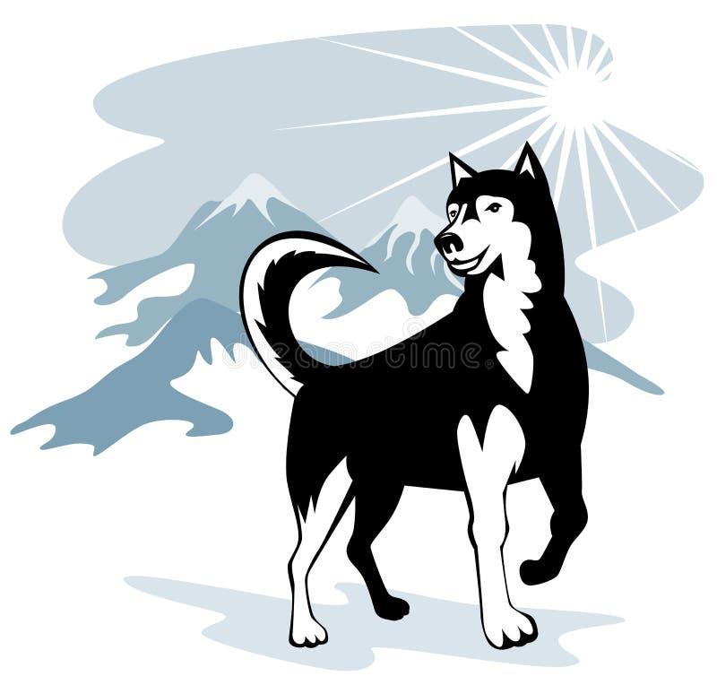 Malamute d'Alaska illustration libre de droits