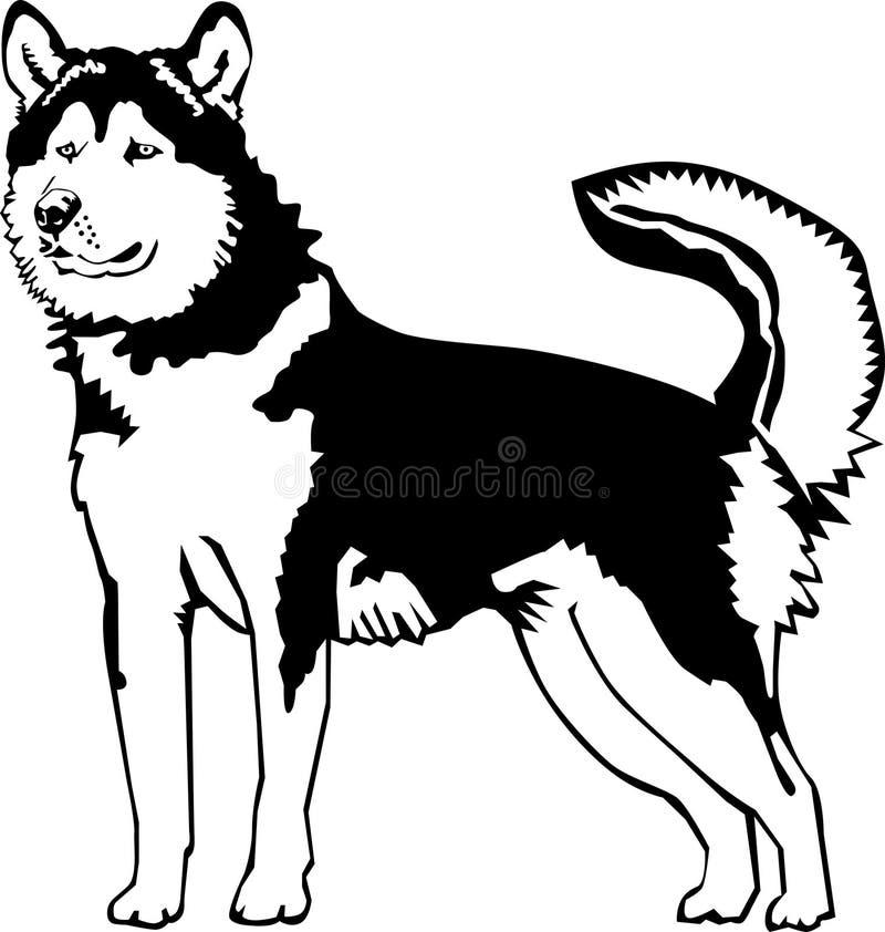 Malamute do Alasca preto e branco ilustração do vetor