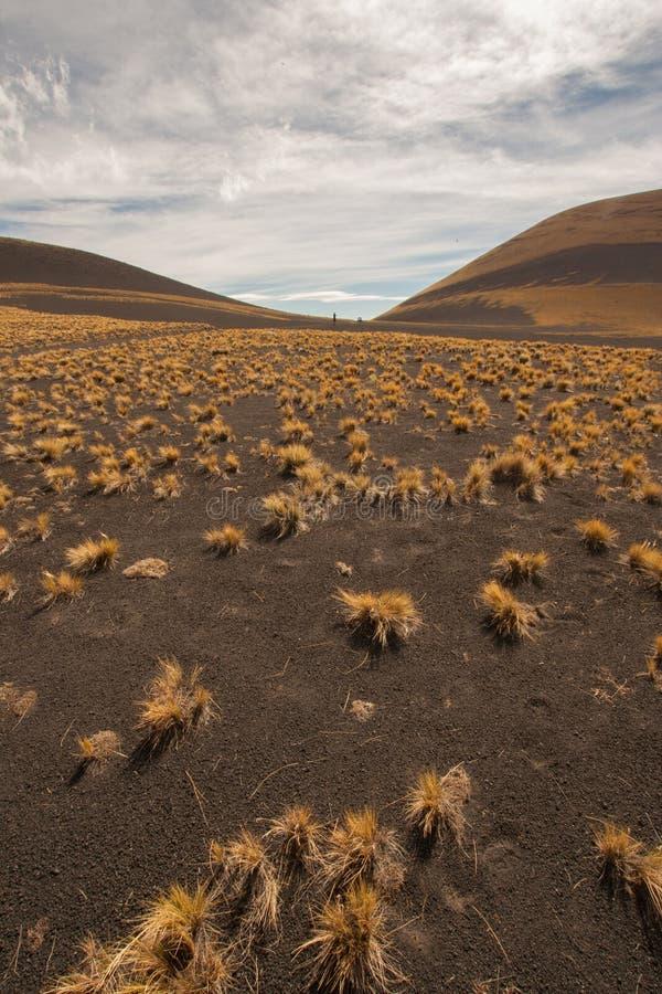 Malargue, Argentinien stockbilder