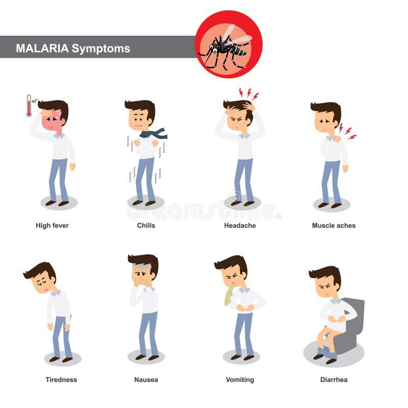 Malaria symptoms. Such as high fever, chills, headache, muscle pain,tiredness, nausea, diarrhea etc vector illustration