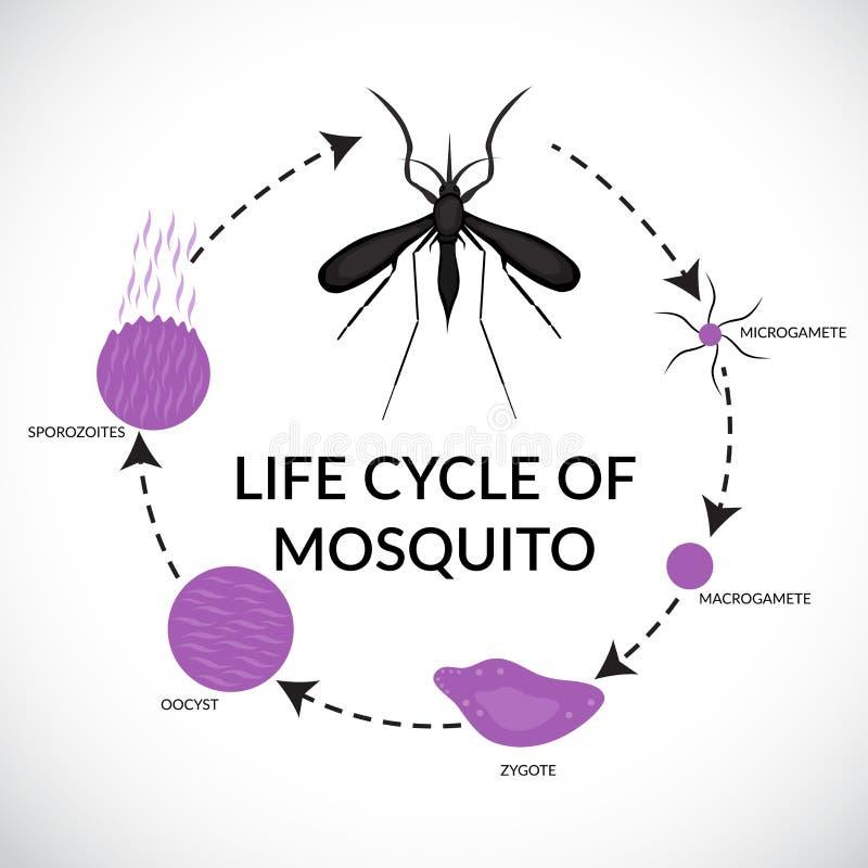 MalariaDay stock illustrationer