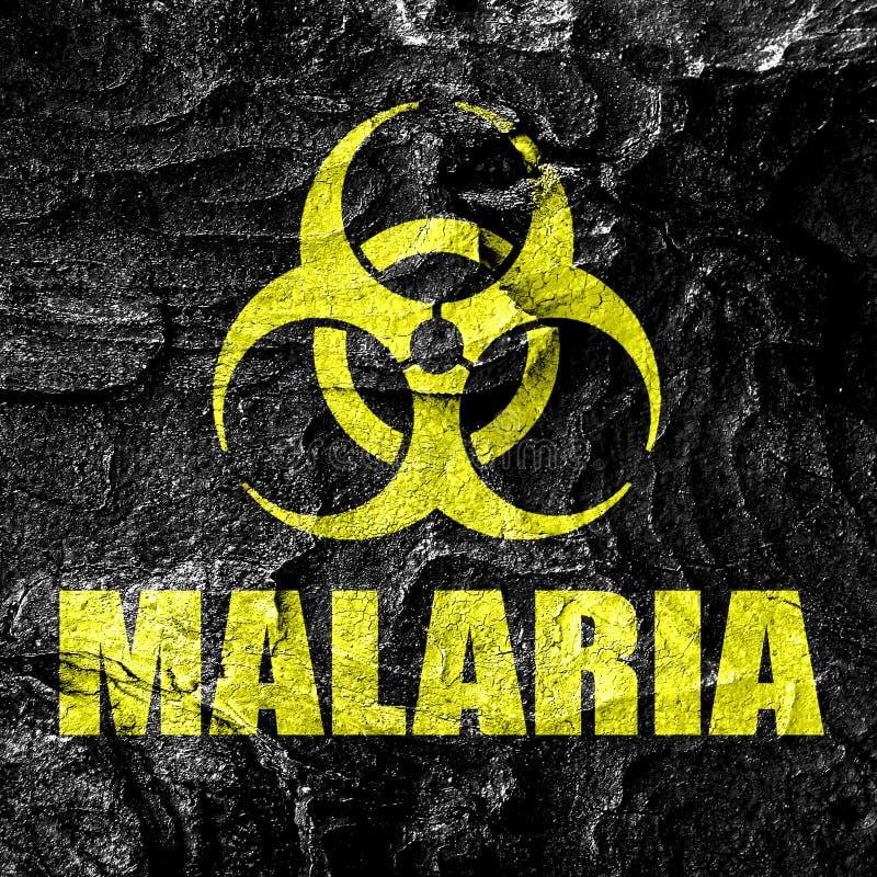 Malarii pojęcia tło fotografia royalty free