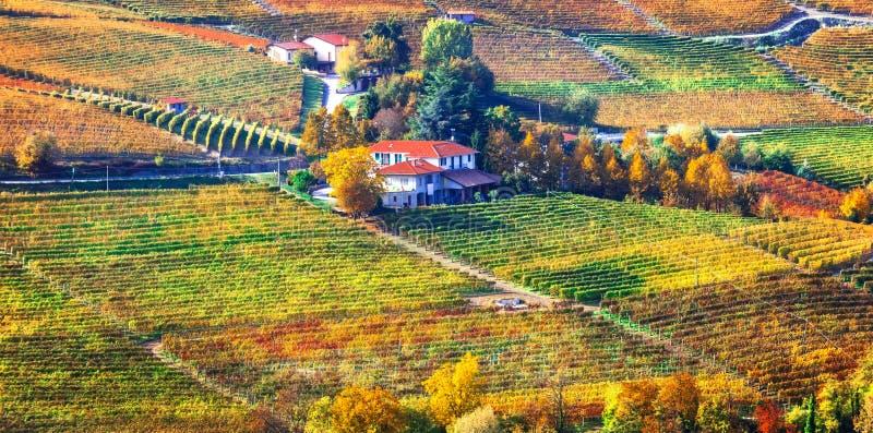 Malarska wieś i piękni winnicy Piemonte w aucie zdjęcie stock