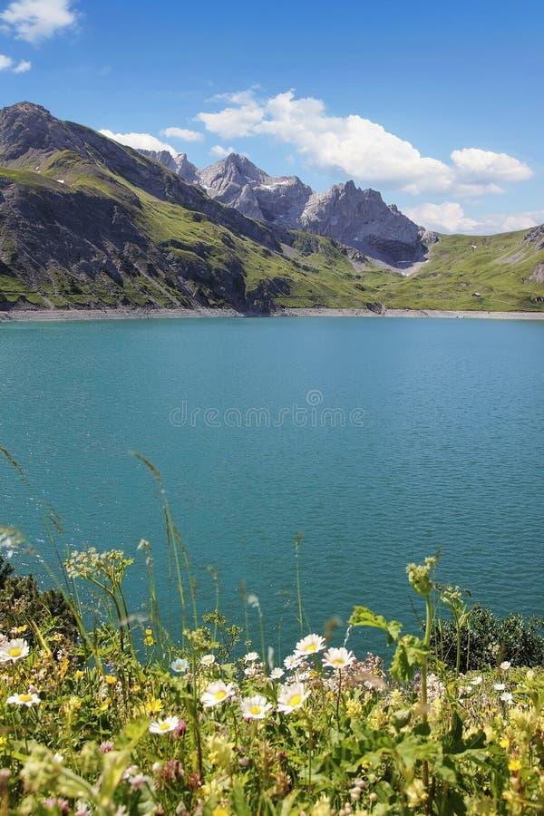 Malarski sztucznego jeziora lunersee z wysokogórskimi kwiatami zdjęcia royalty free