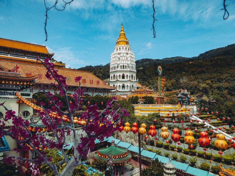 Malasia - flores y templo en Penang imagen de archivo