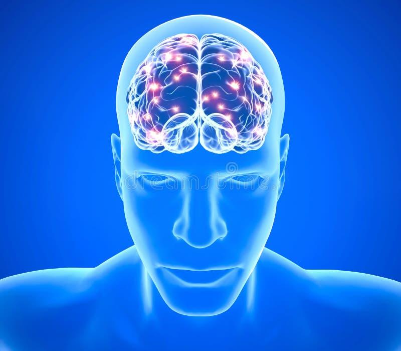 Malattie degeneranti del cervello, Parkinson, sinapsi, neuroni, ` s, di Alzheimer rappresentazione 3d royalty illustrazione gratis
