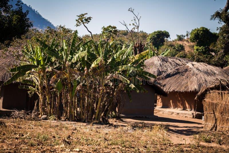 malawi arkivfoton