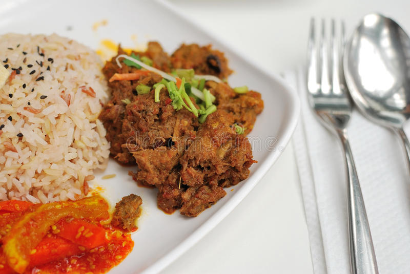 Malay vegetarian rendang chicken or mutton rice. Vegetarian rendang chicken or mutton with unpolished red rice. Suitable for concepts such as diet and nutrition stock images