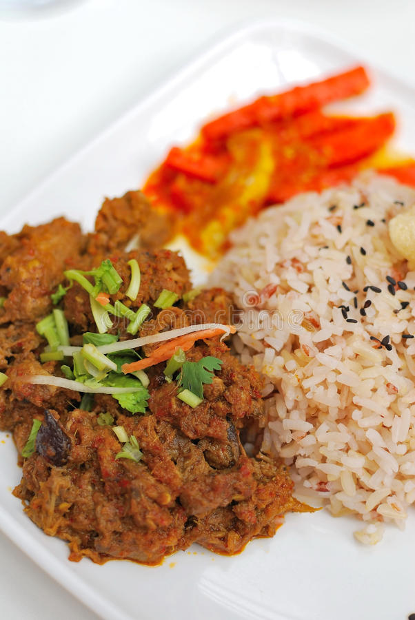 Download Malay Vegetarian Rendang Chicken Or Mutton Rice Stock Image - Image: 13503581