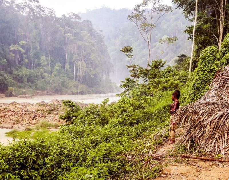 Malaysia - Junge in Taman Negara lizenzfreie stockfotografie