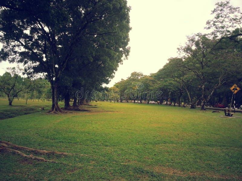 Malaysia Taiping Garden royaltyfri bild