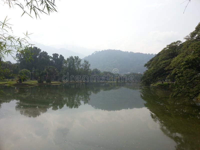Malaysia Taiping parkerar arkivfoton