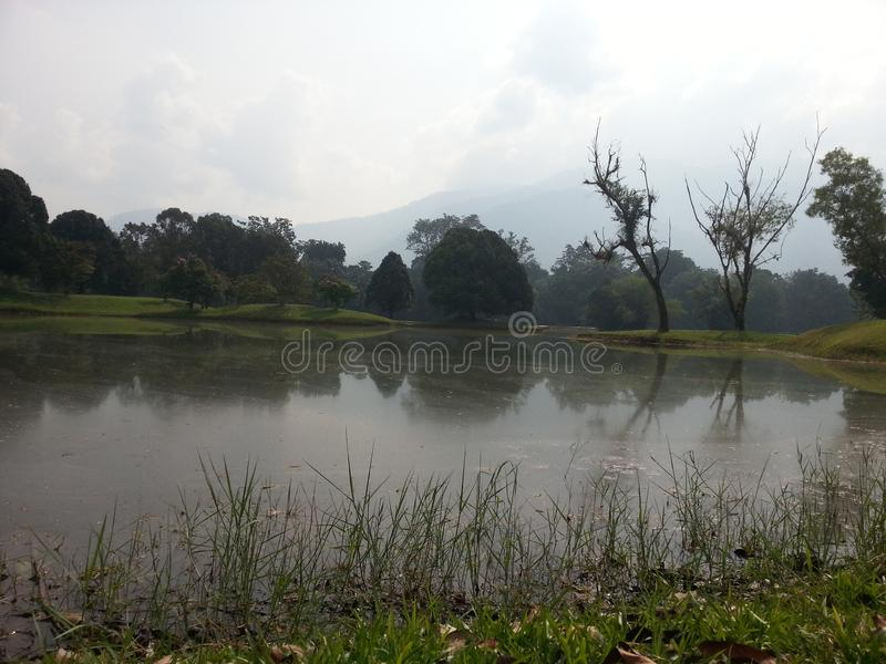 Malaysia Taiping parkerar royaltyfri fotografi