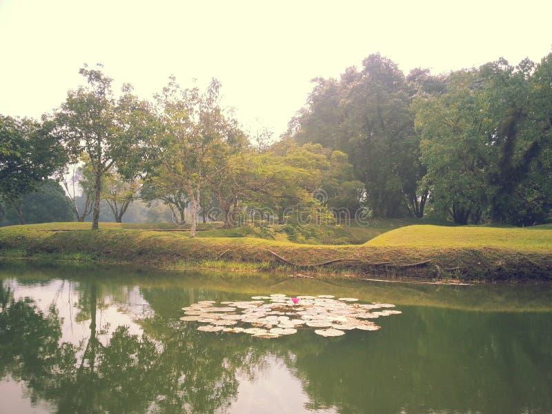 Malaysia Taiping trädgård royaltyfri bild