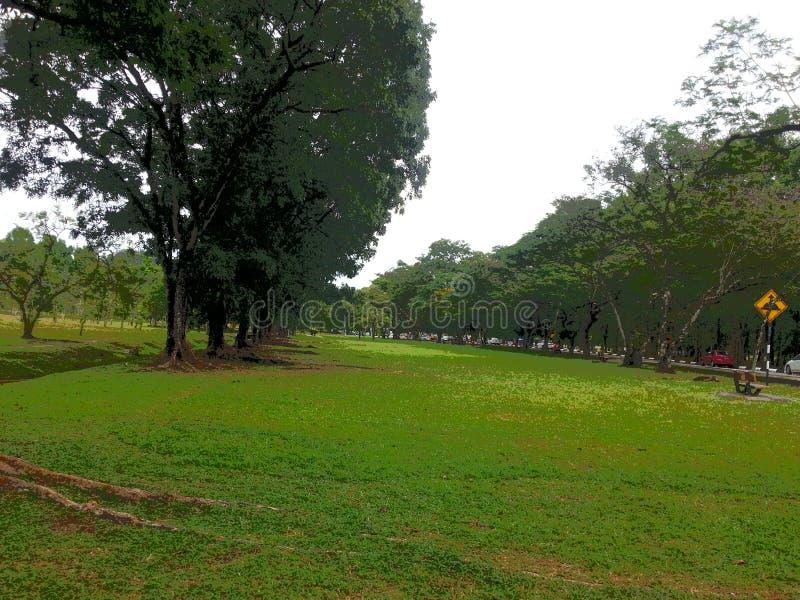 Malaysia Tsiping Garden park. One royalty free stock photos