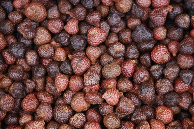 Malaysische Früchte stockfotos