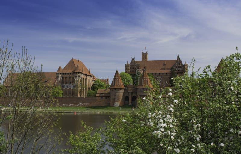 Malbork ein starkes Teutonic Schloss über dem Nogat stockbilder