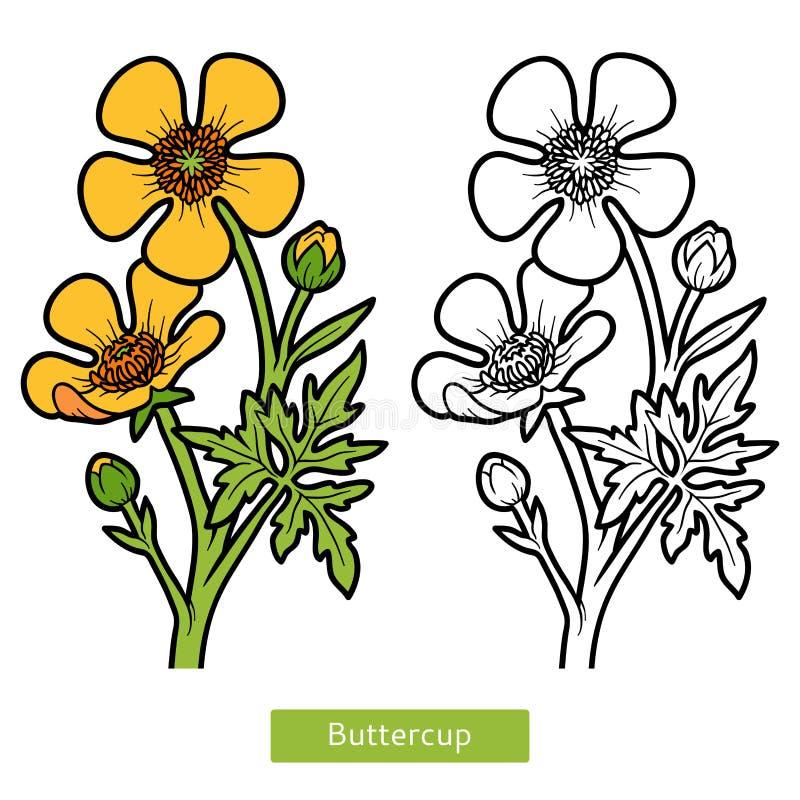 Großzügig Teile Einer Blume Malseite Ideen - Ideen färben - blsbooks.com