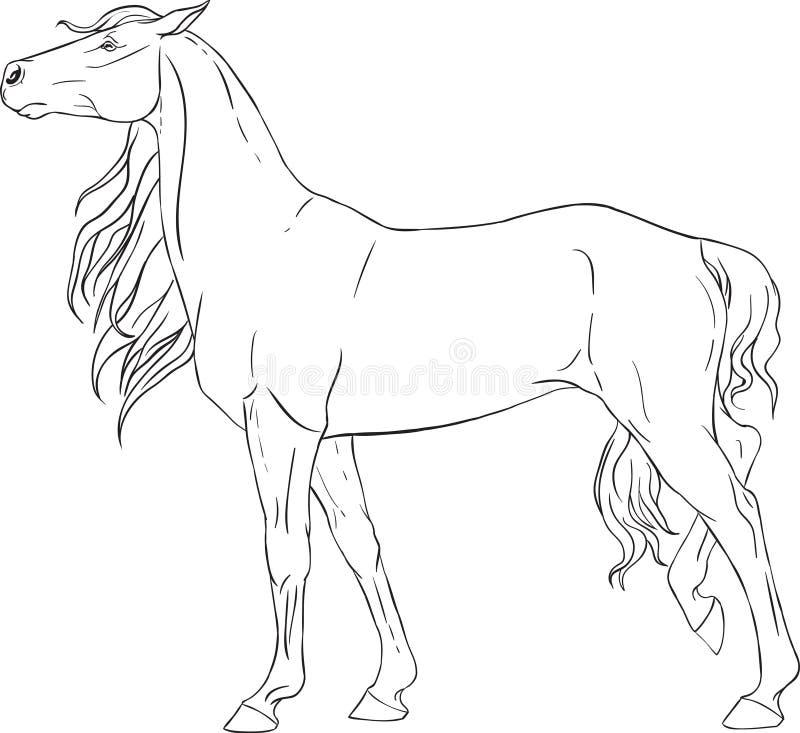 Malbuch mit einem Pferd stock abbildung