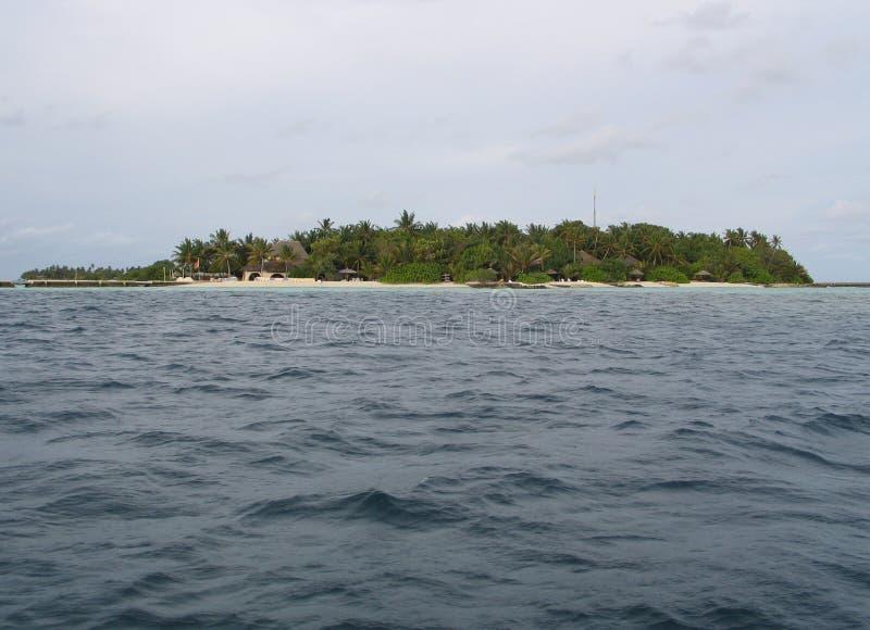 Maldivas, isla tropical entera en el Océano Índico fotografía de archivo