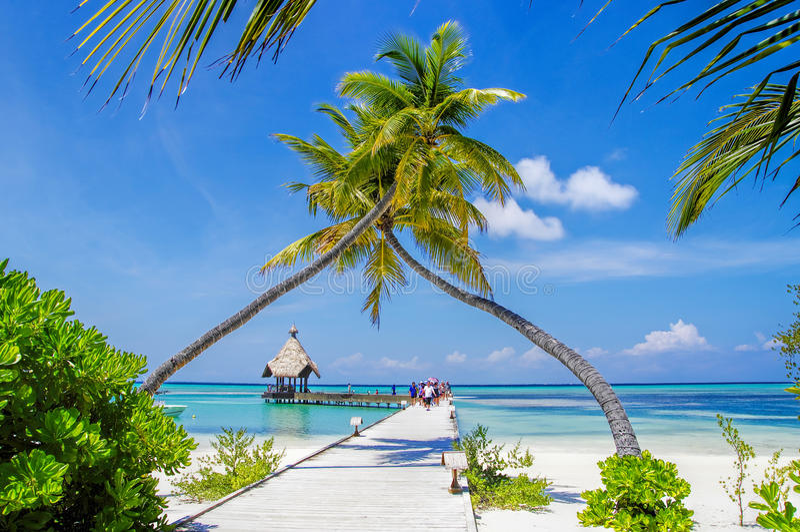 Maldivas - molhe ensolarado foto de stock