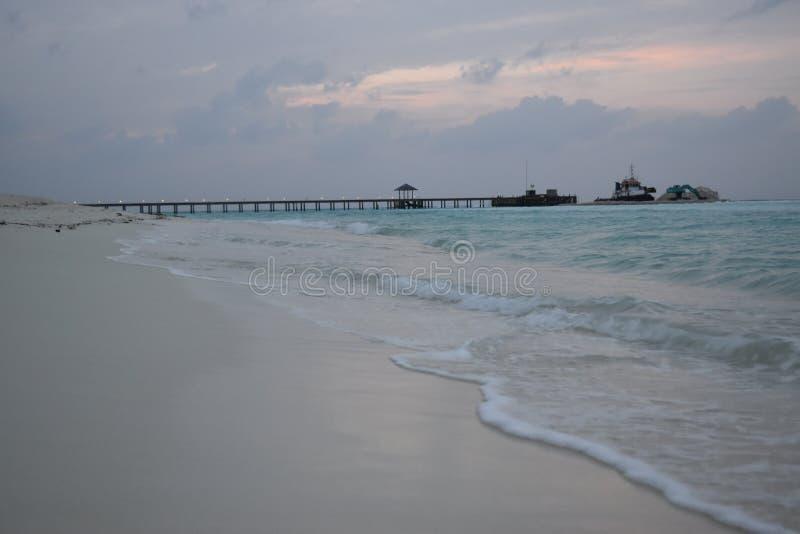 Maldiverna strand i afton royaltyfri bild