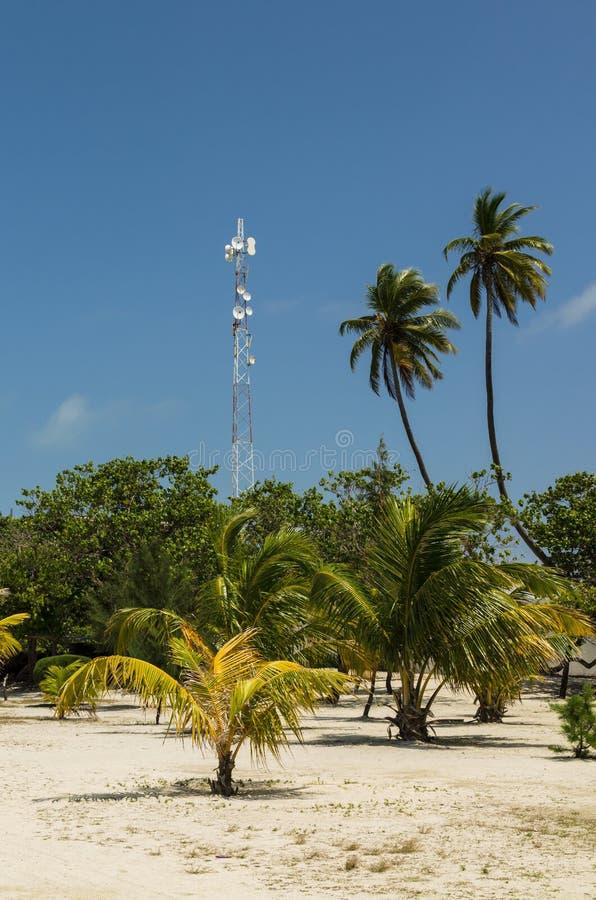 MALDIVES †'Listopad, 2017: Telefonu komórkowego masztu drzewka palmowe na niebieskiego nieba tle i wierza fotografia royalty free