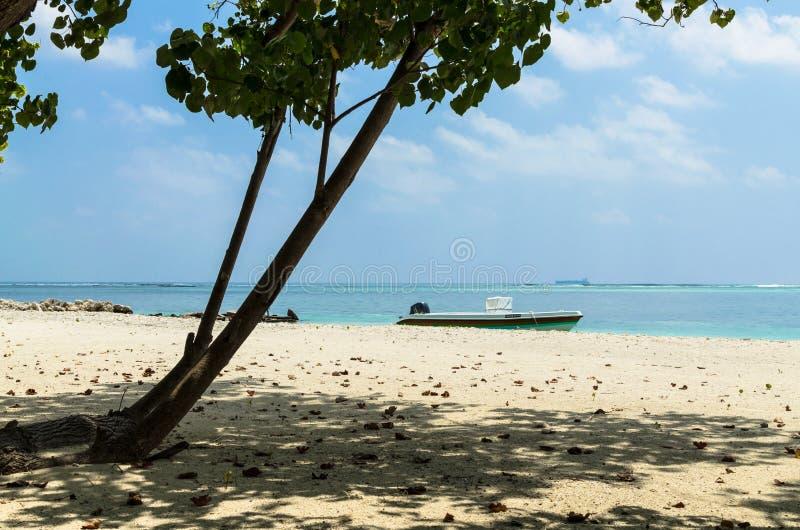 MALDIVES †'Listopad 19, 2017: Tropikalny plażowy natura krajobraz, Kaafu atol, Kuda Huraa wyspa zdjęcia stock