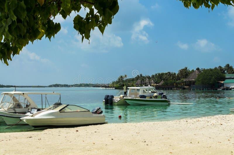 MALDIVES †'Listopad 19, 2017: Tropikalny plażowy natura krajobraz, Kaafu atol, Kuda Huraa wyspa fotografia stock