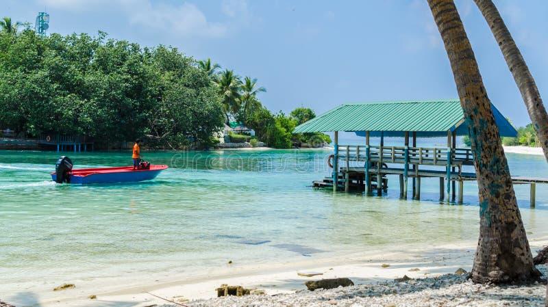 MALDIVES †'Listopad 19, 2017: Tropikalny plażowy natura krajobraz, Kaafu atol, Kuda Huraa wyspa obrazy stock