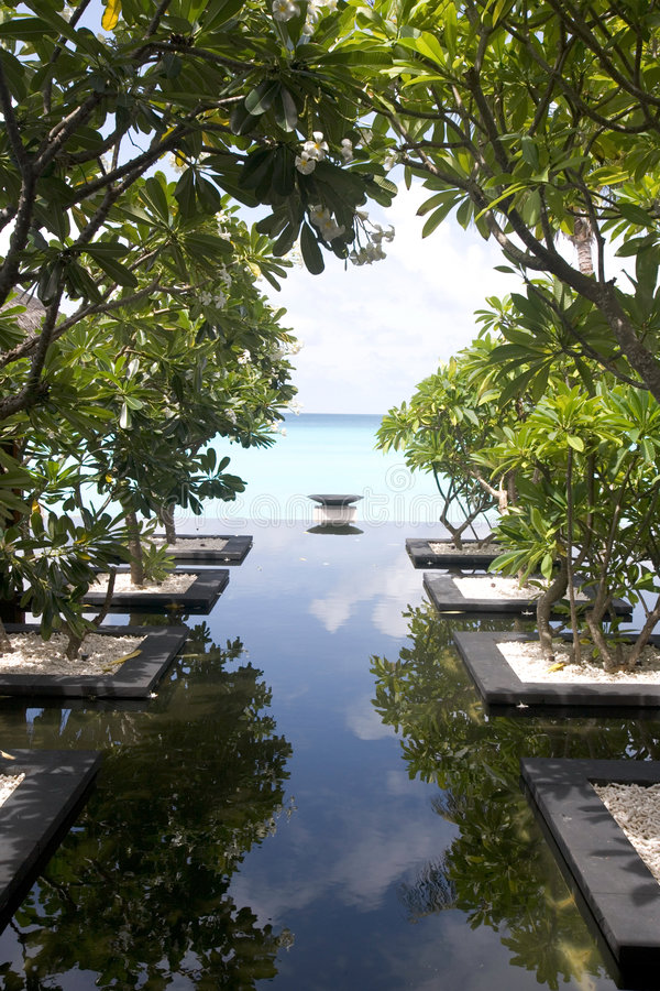 Download Maldives 09 stock photo. Image of pond, beach, vignette - 987566