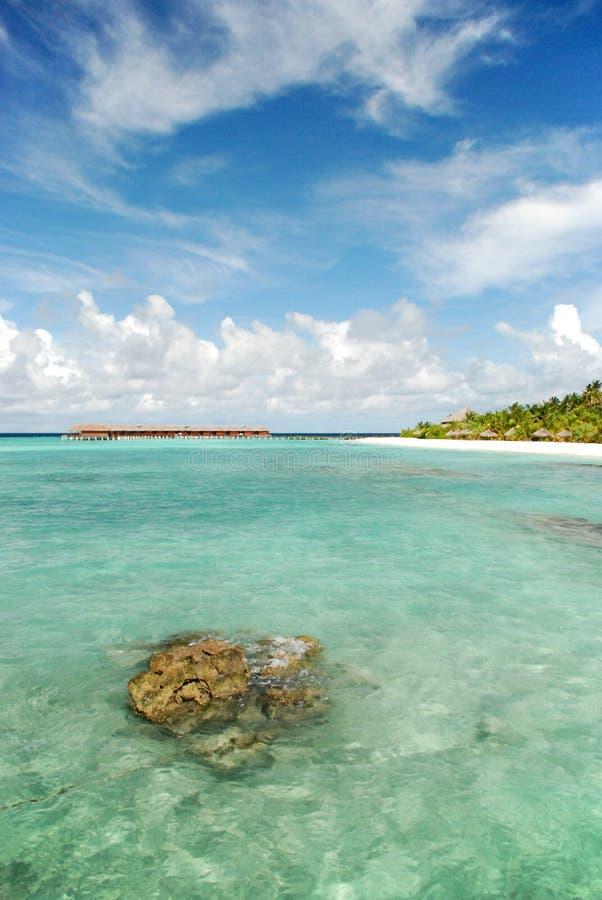 The Maldives royalty free stock photo