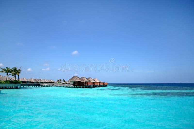 maldives arkivfoto