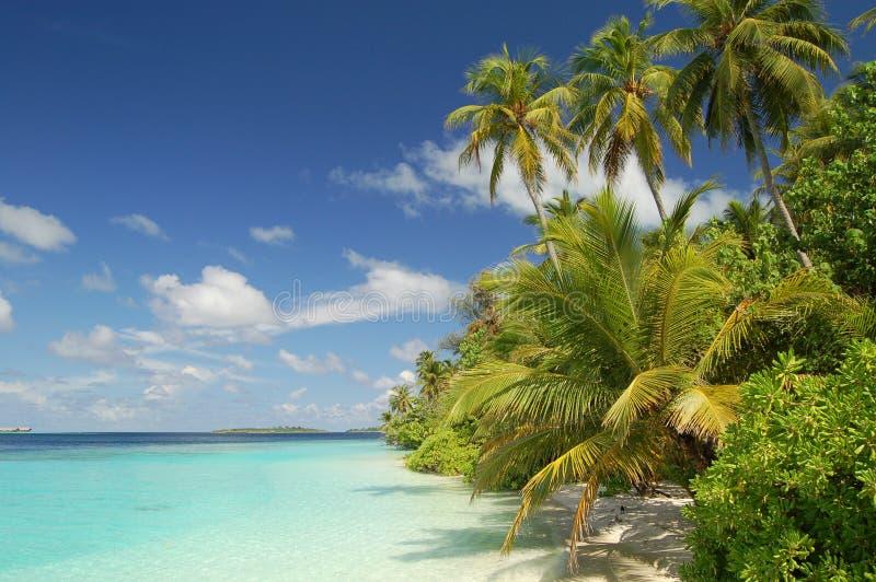 Maldives fotografía de archivo