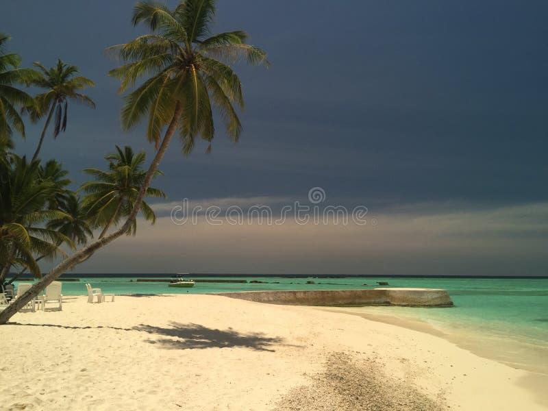 Maldives obraz stock