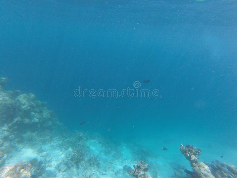 Maldives zdjęcia stock