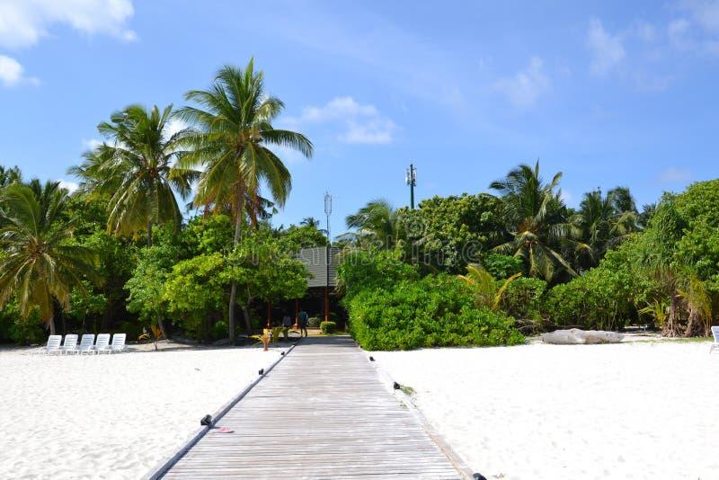 maldives stock fotografie
