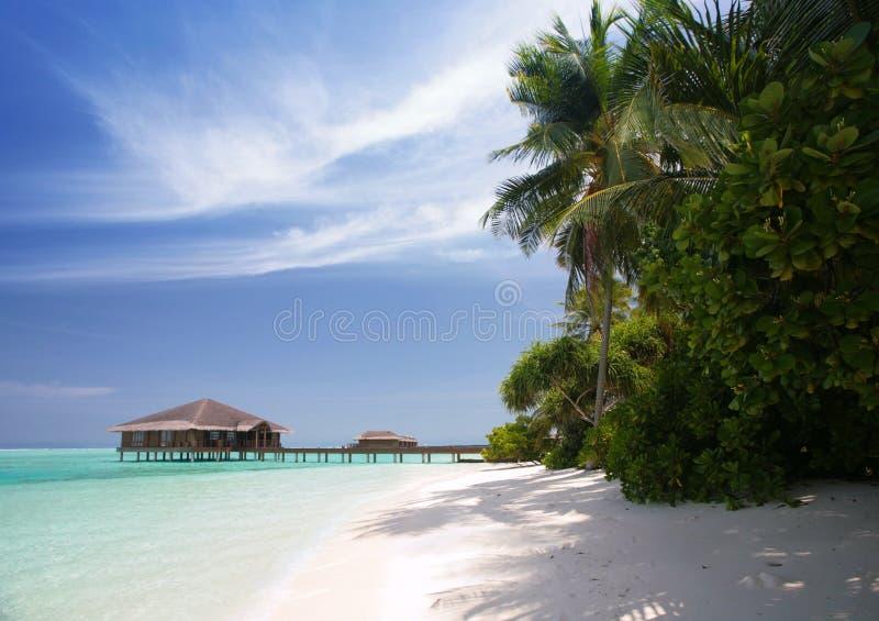 Maldives Beach Royalty Free Stock Photo
