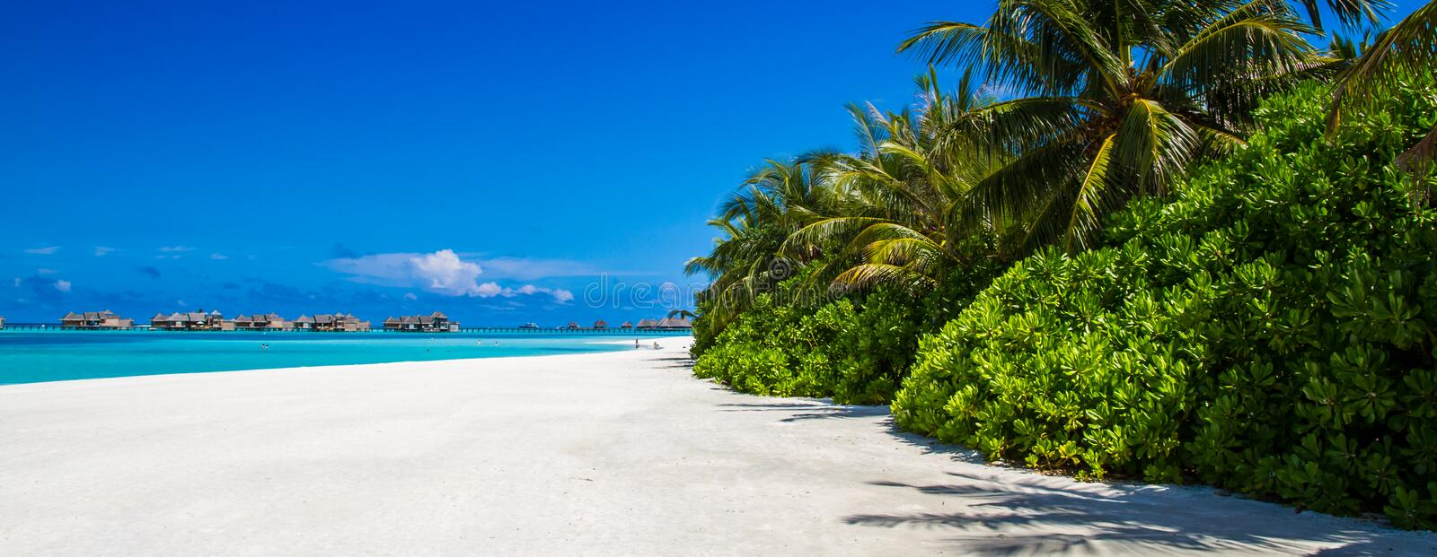 Maldives beach panorama under the blue sky. Maldives beach panorama. Luxury water villas, in exotic blue lagoon. Wide screen background concept. Magical stock image