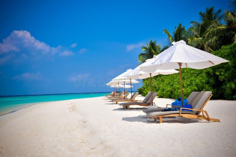 Maldives beach shezlongs 3. Shezlongs on Maldives beach blue sky stock image